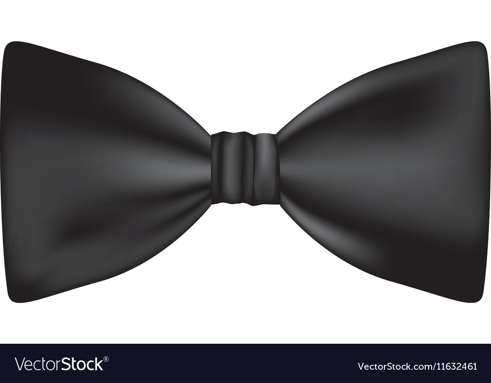 Satin bowtie design vector