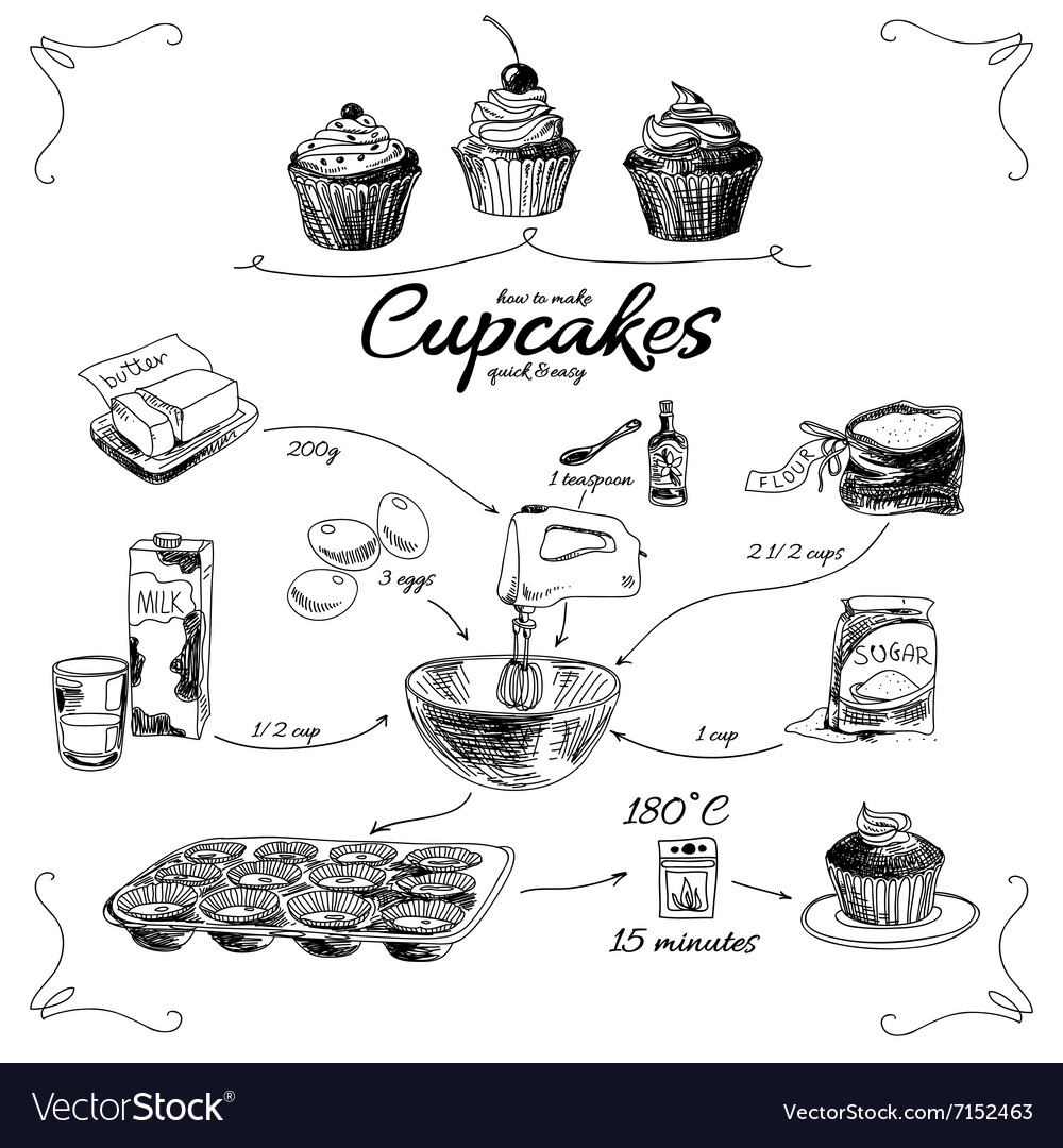 Simple cupcake recipe step by step hand drawn vector