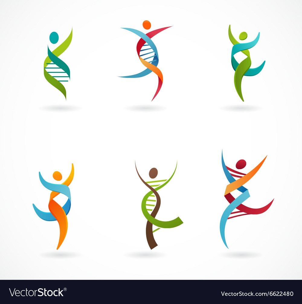 Dna genetic symbol  people man and woman icon vector