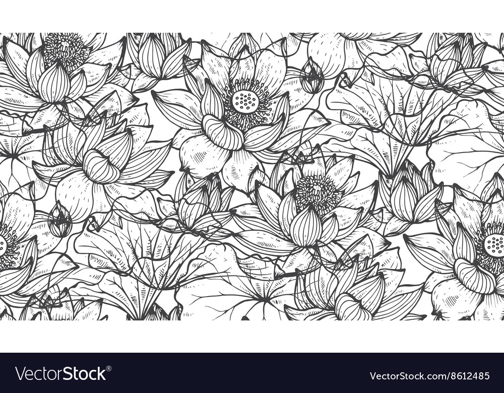 Floral seamless pattern with hand drawn lotus vector
