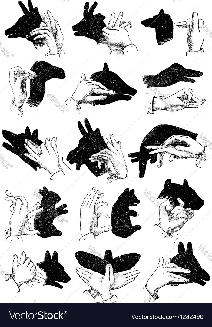Hand shadow animals vector