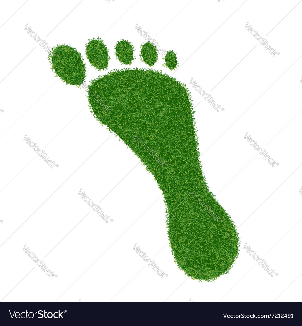 Footprint of grass vector