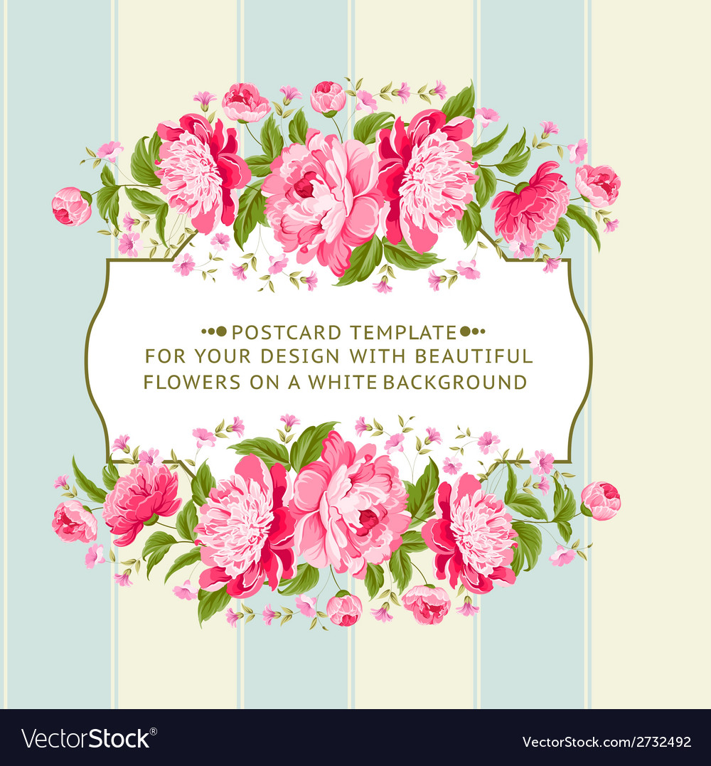 Card of color flowers vector