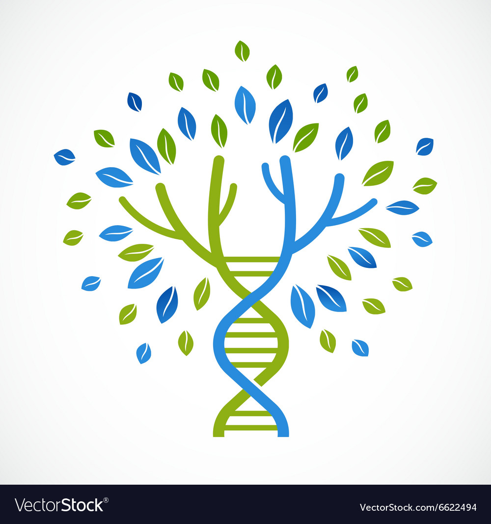 Dna genetic icon  tree with green leaves vector