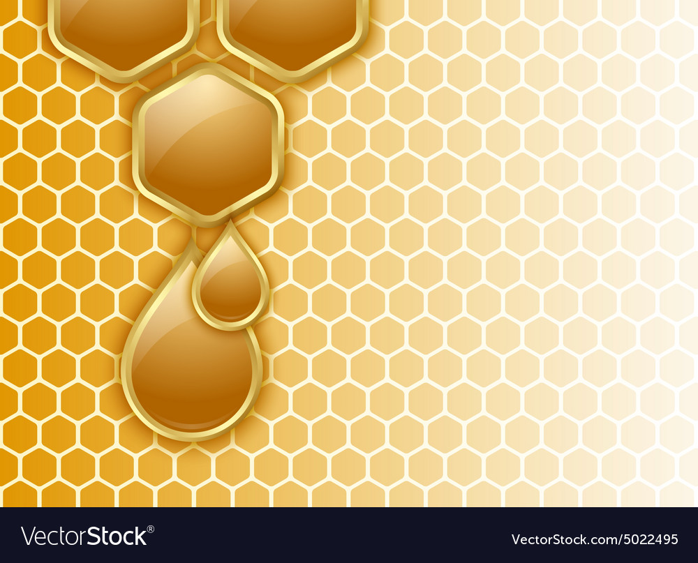 Honeycomb background vector