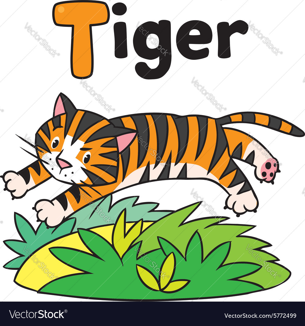 Funny wild tiger for abc alphabet t vector