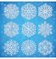Snowflakes on blue background vector image