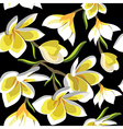 Floral seamless pattern with frangipani vector image vector image