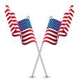 The USA Waving Flag vector image