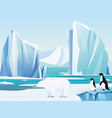 arctic landscape with polar vector image