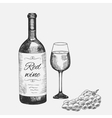 Hand drawn set of red wine elements vector image