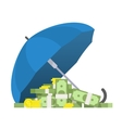 Protection of money vector image