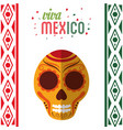 viva mexico invitation party vector image