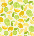 citrus pattern Seamless - vector image