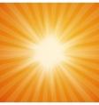 Summer sun burst on orange background vector image