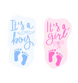 lettering it is a boy and it is a girl vector image