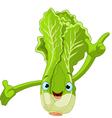 cartoon lettuce character vector image