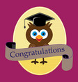 owl with hat graduation image vector image