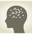 Pixel in a head vector image