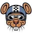 Mouse head rider mascot vector image