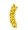 Stalk of ripe barley icon cartoon style vector image