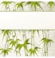 Bamboo with leaves pattern vector image