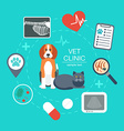Banner background poster concept with veterinary vector image
