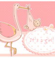 Cute baby girl announcement card with stork vector image