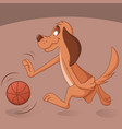 Cute dog plays basketball vector image