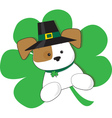 Irish Puppy vector image vector image