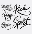 martial art and sport hand written typography vector image