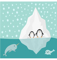 Penguin narwhal and seal family Iceberg Blue water vector image