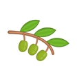 Olive branch with green olives icon cartoon style vector image