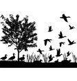 Flock of ducks vector image