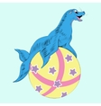 sea leon on the ball vector image