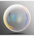 rainbow reflection soap bubble big transparent vector image