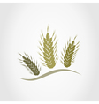 Wheat2 vector image