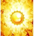 Sunshine abstract background vector image vector image