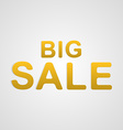 big sale text vector image