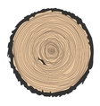 Conceptual background with tree-rings Ring vector image