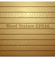light wood plank texture vector image