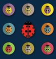 group of beetles vector image