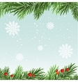 Spruce branches background Christmas background vector image vector image