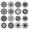 decor flowers set vector image vector image