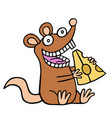 funny rat eating a piece of cheese vector image