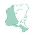 isolated cute cauliflower vector image