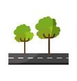 isolated tree on highway cartoon vector image