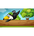 Scene with toucan flying over the wall vector image