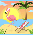 summer background with pink flamingo and red white vector image