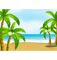 A peaceful beach vector image vector image